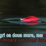 Echipament karaoke - DVD original cu melodii KARAOKE romanesti