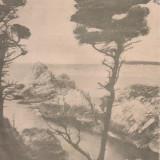 Ziarul Stiintelor si al Calatoriilor : pe coasta Carmelului 1929 - Carte de aventura