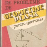 (C873) CULEGERE DE PROBLEME DE GEOMETRIE PLANA PENTRU GIMNAZIU DE PETRUTA GAZDARU, D. BADESCU, S. GAZDARU, EDITURA VIITORULUI ROMANESC, BUCURESTI 1994 - Culegere Matematica