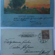 Litografie, circulata la 1900 la Timisoara, stare excelenta - Carte Postala Banat pana la 1904