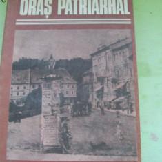 ORAS PATRIARHAL CEZAR PETRESCU - Roman