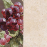 Fructe-ilustrata 11-struguri