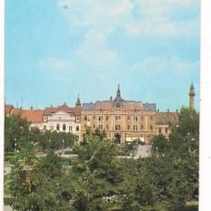Carti Postale Romania dupa 1918, Necirculata, Printata - Carte postala-SATU MARE-vedere
