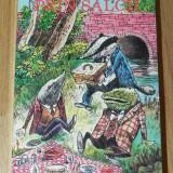KENNETH GRAHAME - VANTUL PRIN SALCII - Carte de povesti