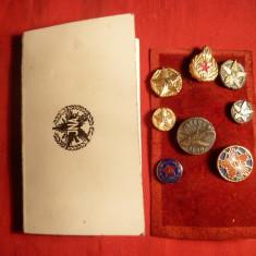 Insigna - Colectie Insigne Militare Yugoslavia in Carnet Original
