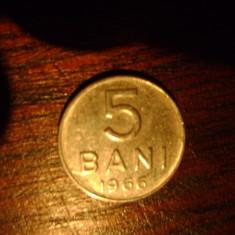 Monede Romania - Monezi / Monede / Moneda 5 bani Vechi Romanesti ( 1966 ) SET 20 buc.