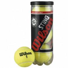 Minge tenis de camp - MINGI TENIS WILSON