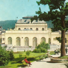 Carti Postale Romania dupa 1918, Circulata, Fotografie - NGL: Romania VATRA-DORNEI Carte Postala Color Circulata Carti Postale Vechi CP