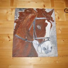 Tablou pictat manual pe panza in culori acrilice profesionale(Cal), Animale, Altul