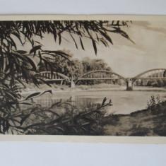 Carti Postale Romania 1904-1918, Necirculata - CALIMANESTI, Pod peste Olt la Ostorv