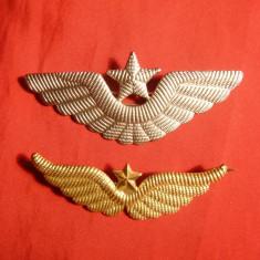 Insigna - Set 2 Insigne Militare Aviatia Americana -Pilot Comandant