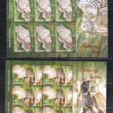 Timbre Romania, Nestampilat - ROMANIA 2013 - PASARI RAPITOARE DE NOAPTE - SERIE MINICOLI - LP 1984