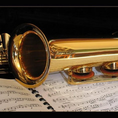 Cursuri Saxofon Video DVD - Curs hobby