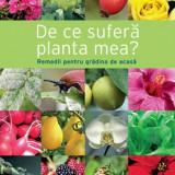 Carte pentru gradinarit - De ce sufera planta mea? - Reader's Digest