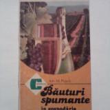 Bauturile spumante in gospodarie - Ion M. Pusca