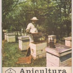 5A(000) revista-APICULTURA IN ROMANIA iulie1986