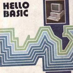 HELLO BASIC de LUMINITA STATE - Carte Informatica
