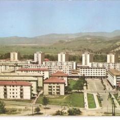 Carti Postale Romania dupa 1918, Circulata, Fotografie - CPI (B2878) VEDERE DIN GHEORGHE GHEORGHIU DEJ, EDITURA MERIDIANE, CIRCULATA, 1967, STAMPILE, TIMBRU
