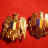 2 Insigne de Sapca Militara, dim.=3, 5x2, 6 cm si 3, 8x3 cm