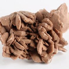 Fosila roca - Trandafirul desertului, roca de colectie ( flori de mina, roci, minerale )