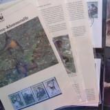 HONDURAS 1990 WWF MAIMUTE - SET COMPLET + 4MAXICARDS +4 FDC