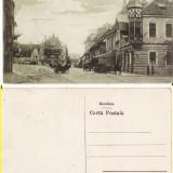 Carti Postale Romania pana la 1904, Necirculata, Printata - Sighisoara- Piata Unirii
