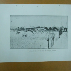 Carte Postala - Stupi albine albinarit comuna Barbosi Covurlui azi Galati 1926