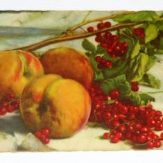 Carte postala - ARTA - Piersici - FRUCTE - necirculata anii 1910-1920 - 2+1 gratis toate produsele la pret fix - RBK4030, Europa, Printata