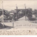 BORSEC, 1904, RARA - Carte Postala Romania 1904-1918, Circulata, Fotografie