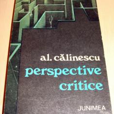 Perspective Critice - Al. Calinescu - Carte Codul penal adnotat
