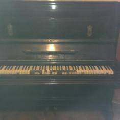 Pianina Altele Ludwig Simon Ulm an 1886