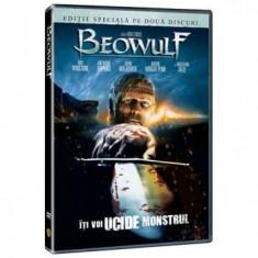 Beowulf-2007 - Film animatie warner bros. pictures, DVD, Romana