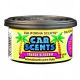 Odorizant Auto - California Car Scents odorizant cu aroma de Citrice / Squash Blossom