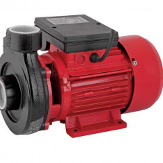 070103-Pompa de apa curata 750 W pentru suprafata Raider Power Tools - Pompa gradina