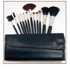 Pensula make-up - Set de 12 pensule profesionale