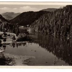 LACUL ROSU SI IMPREJURIM =GYILKOSTO ES KORNYEKE RPR - Carte Postala Transilvania dupa 1918, Necirculata, Fotografie