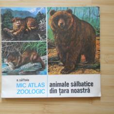 Carte de povesti - N. SAFTOIU--MIC ATLAS ZOOLOGIC - ANIMALE SALBATICE DIN TARA NOASTRA