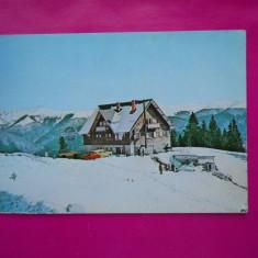 HOPCT 16297 SINAIA COTA 1300 -CABANA BRADET/IARNA - JUD PRAHOVA [NECIRCULATA] - Carte Postala Muntenia dupa 1918, Printata