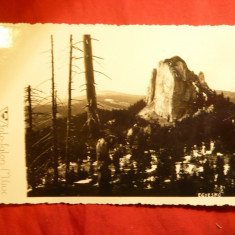 Ilustrata zona Miercurea Ciuc, Egyesko, interbelica - Carte Postala Transilvania pana la 1904, Necirculata