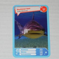Cartonas de colectie - CARTONASE MEGA IMAGE - COMORILE OCEANELOR NR 17