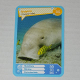 CARTONASE MEGA IMAGE - COMORILE OCEANELOR NR 66 - Cartonas de colectie