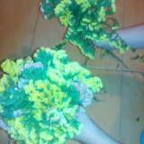 Flori uscate(flori de pai, imortele-limonium, statica)
