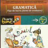 Cornelia Chirita - GRAMATICA FISE DE LUCRU (ITEMI DE EVALUARE) CLASA V - Manual Clasa a V-a, Romana