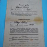 CARNET SCOLAR SCHULNACHRICHTEN 1930 -1931, JUD. TARNAVA MARE