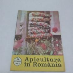 Revista/Ziar - REVISTA APICULTURA ÎN ROMÂNIA NR. 10 - OCTOMBRIE 1982