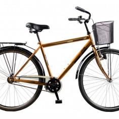 Biciclete DHS de oras - Bicicleta de oras DHS, 13 inch, 28 inch, Numar viteze: 1, Otel