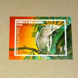 Timbre straine, Stampilat - Colita stampilata - NATURA - ANIMALE - Papagal - GUINEEA ECUATORIALA - 2+1 gratis toate produsele la pret fix - RBK7892