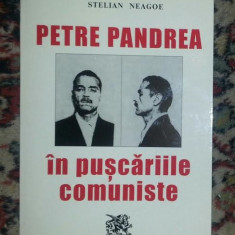 Istorie - Petre Pandrea in puscariile comuniste / Stelian Neagoe