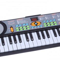 Instrumente muzicale copii - Orga muzicala pentru copii cu microfon