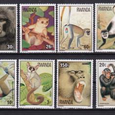 Timbre straine, Nestampilat - Rwanda 1978 fauna maimute MI 922-929 MNH w14